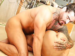 Man licking mans arse galleries and gay...