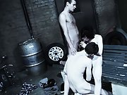 Gay dick group and male nude model newsgroups - Gay Twinks Vampires Saga!